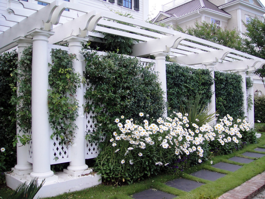 Pergola at Front Entrance of Chadsworth Cottage